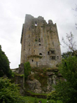 Blarney Castle. Click to view larger photo